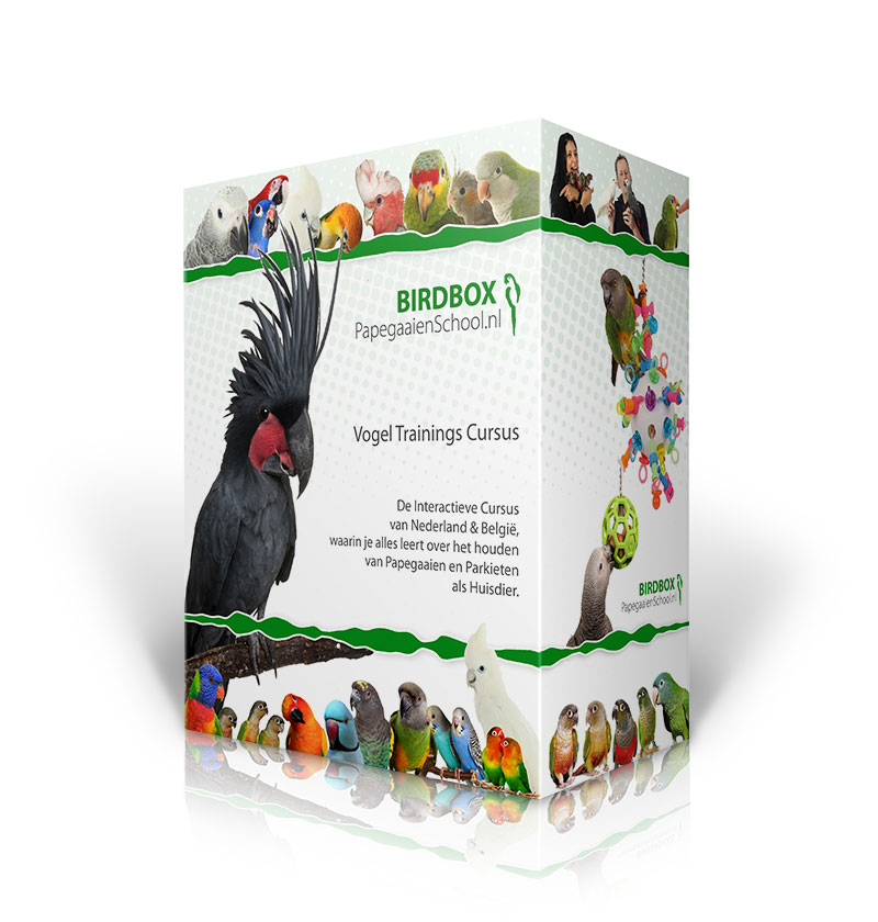 BirdBox Zilver