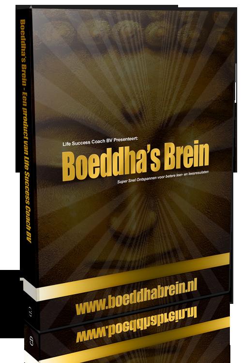 Boeddhas Brein CD Inclusief Online Cursus