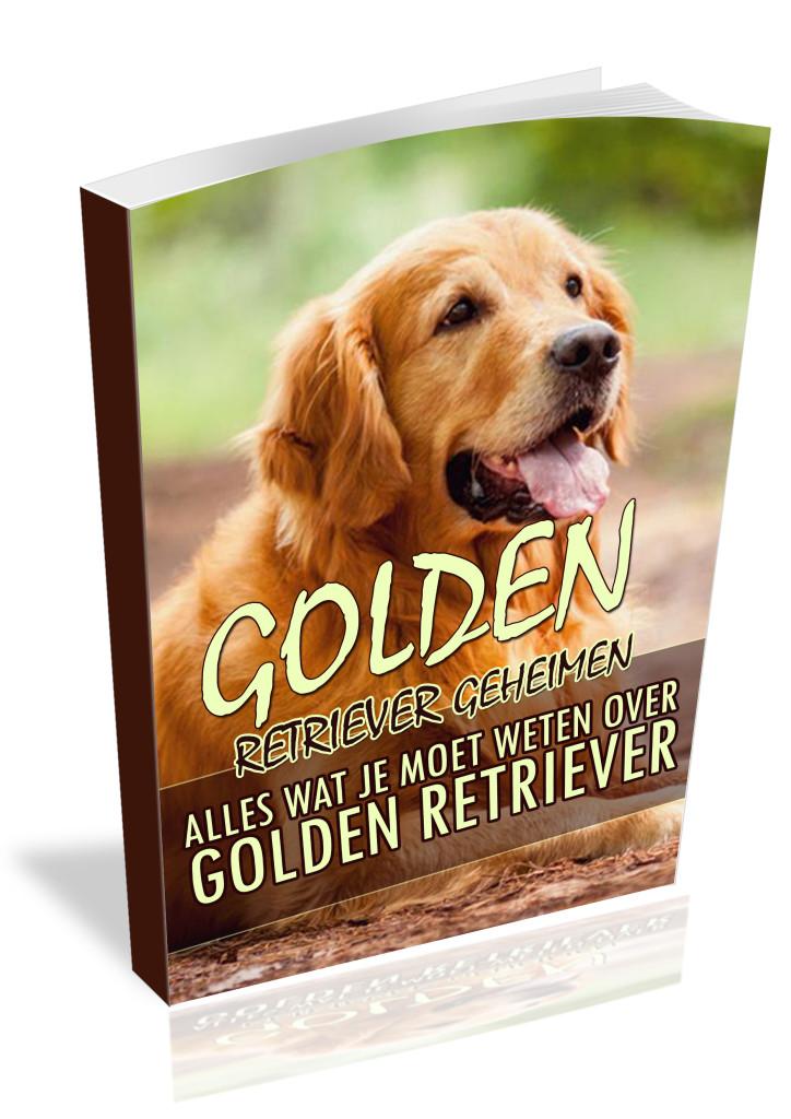 Omgaan met het Golden Retriever Karakter