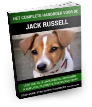 Download Handboek Jack Russel Pup Opvoeden