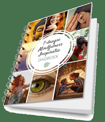 Mindfulness Online Programma Ideal