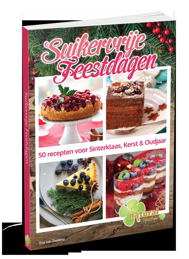 Suikervrije Feestdagen Ebook